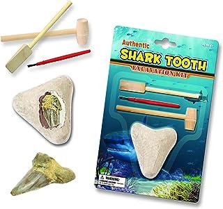 مثقاب أسنان القرش