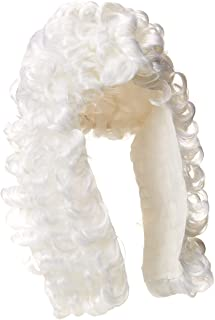 Rubie`s Costume Retro Judge Wig