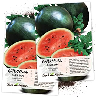 Best touch the watermelon seeds Reviews