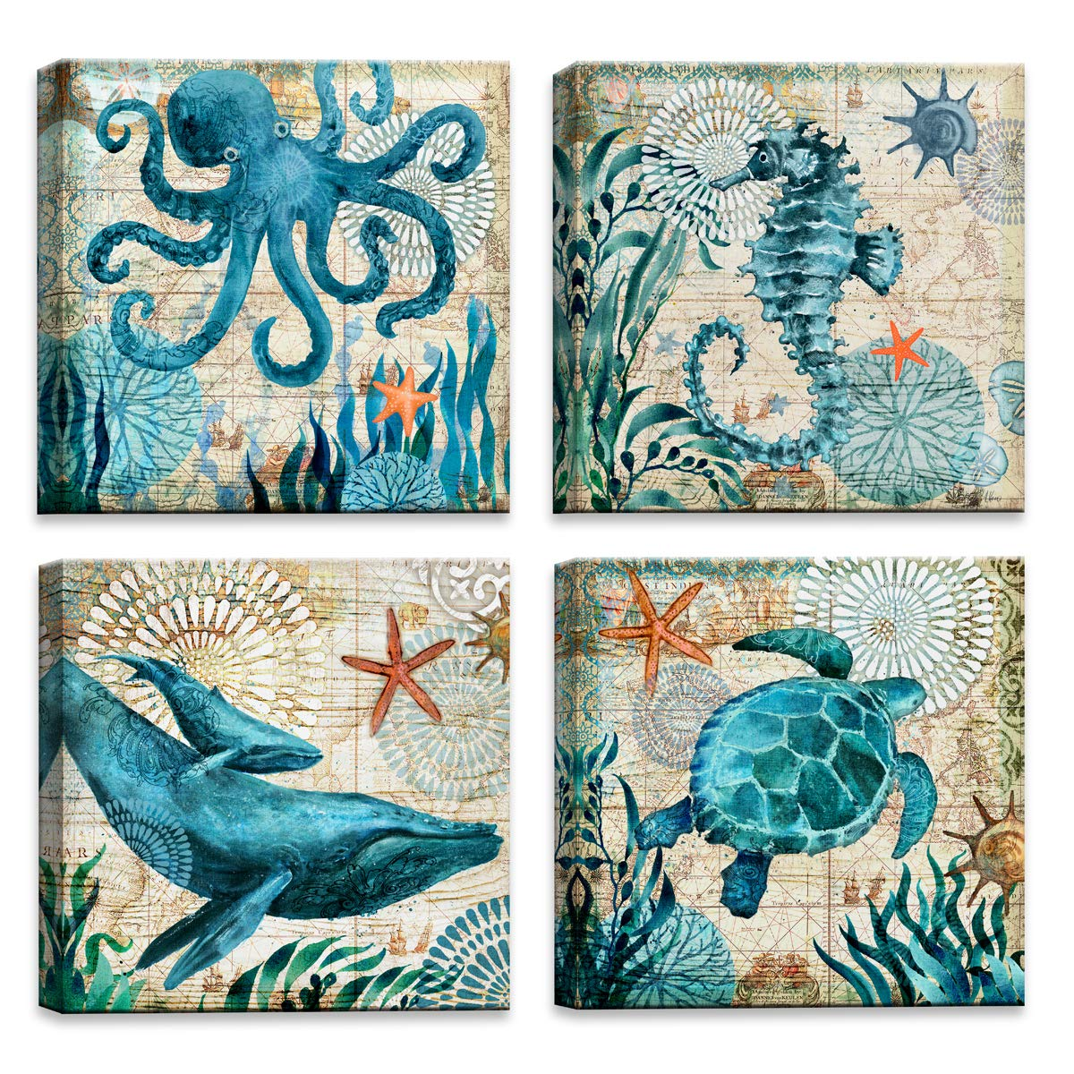 Bathroom Wall Decor Octopus Turtle Seahorse Whale Animal Pictures Bathroom Wall Art Teal Sea Turtle Theme
