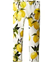 Dolce & Gabbana Kids - Limoni Leggings (Toddler/Little Kids)