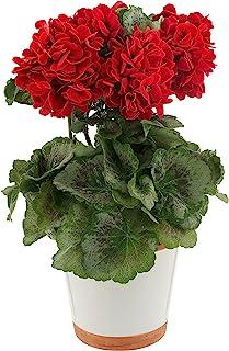 "Nearly Natural 4691 Geranium Decorative Silk Plant, Red,10.25"" x 10.25"" x 17.5"""