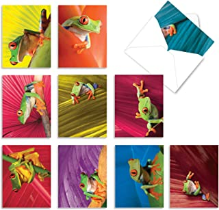 Frog Days' Boxed Set of 10 Gratitude and Thank You Cards with Envelopes, Assorted Froggy Thank You Notes 4 x 5.12 inch, Co...