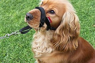 Collar campeón acolchado para entrenamiento de perro, el cabestro detiene los tirones del perro de la herramienta de formación