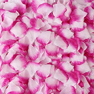 BESKIT 3000 Pieces Silk Rose Petals Artificial Flower Petals for Valentine Day Wedding Flower Decoration (Purple&White)