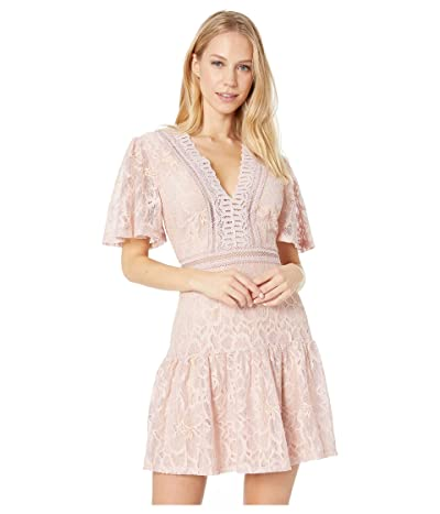 ASTR the Label Muse Dress (Icy Pink) Women