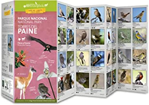 Torres del Paine National Park : Flora & Fauna : Pocket Guide