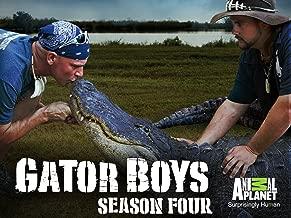 Best gator boys season 4 Reviews
