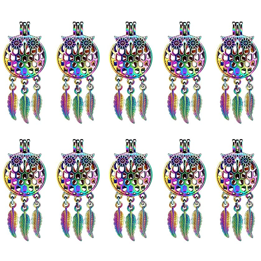 (10 Pack) Rainbow Color Owl Beads Cage Locket Pendant Charms