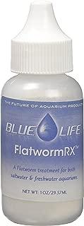 Best saltwater aquarium flatworms Reviews