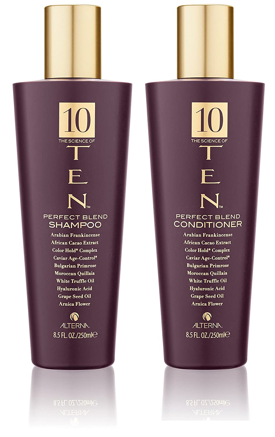 TEN Perfect Blend Shampoo and Conditioner Set, 8.5-Ounce