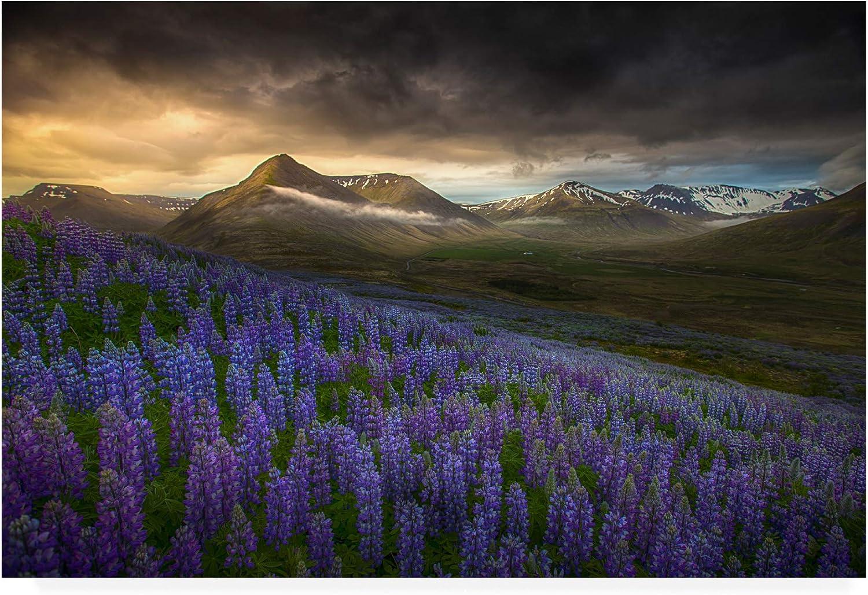 Trademark Fine Art bluee Meadows by Peter Svoboda Mqep, 12x19