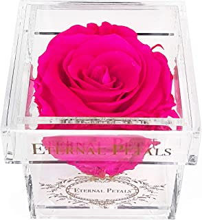 A Real Rose That Lasts A Year - Gold Solo (Hot Pink)