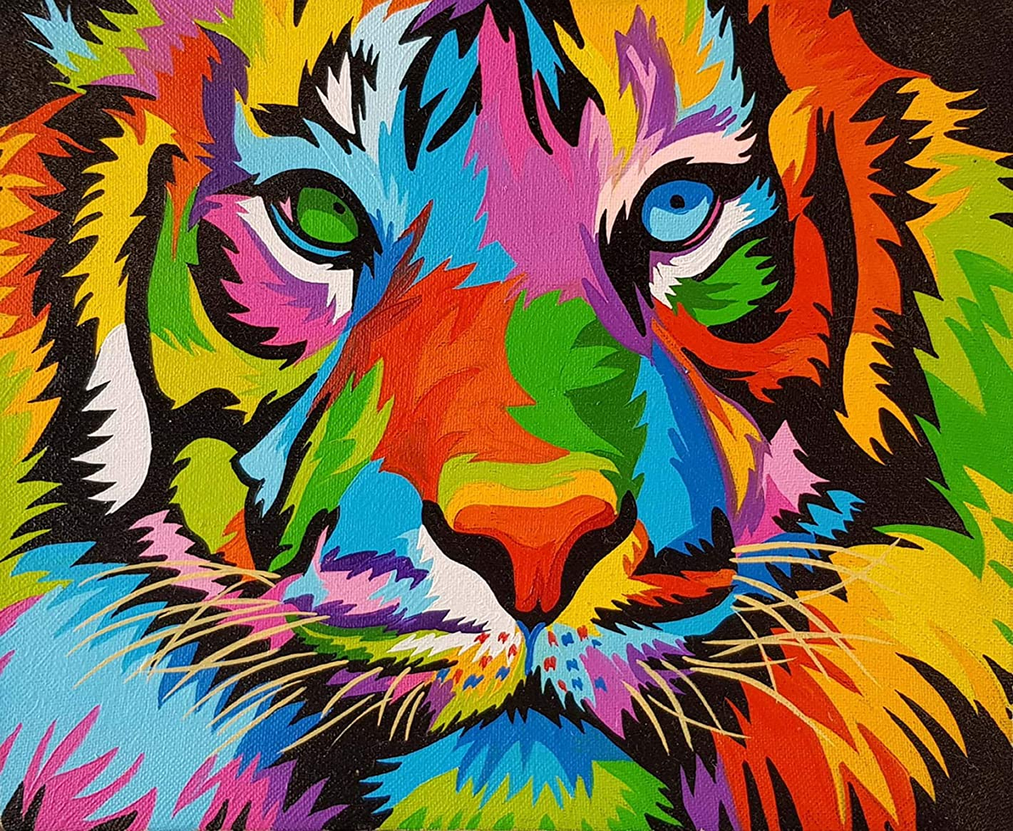 iFymei DIY Oil Painting Kit , Paint by Numbers for Adults & Kids & Beginner , 16 x 20 inch Canvas & Acrylic Paints - Coloured Tiger
