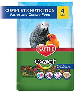 Best kaytee exact natural parrot and conure food Reviews