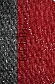 Biblia de Promesas/ The Promise Bible: Dios sus promesas y tu: Edicio'n para jo'venes Gris-Roja/ The Promise Bible: Youth Edition Grey-Red (Spanish Edition)