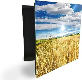 GlassArtist 89271186 Armoire à clés avec façade en Verre magnétique 30 x 30 cm
