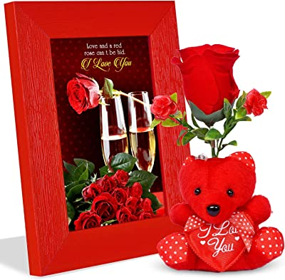 Red Rose Cant be hid Happy Rose Day Valentines Day Quotation Photoframe with 1 Rose & Red Teddy