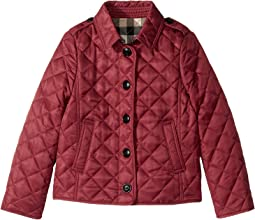 Burberry Kids - Mini Ashurst Quilted Jacket (Little Kids/Big Kids)