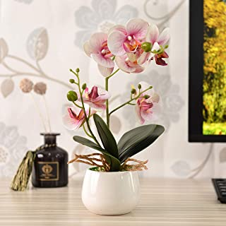 KINBEDY Artificial Bonsai Silk Orchids Phalaenopsis with Vase Home Office Decoration Party Wedding Decor. Pink.