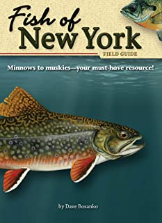 Fish of New York Field Guide (Fish Identification Guides)
