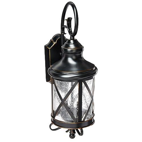 3654c8252e6 Trans Globe Lighting 5120 ROB Outdoor Chandler 19.5