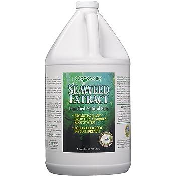 Grow More 6041 Seaweed Extract 11%, 1-Gallon