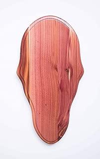 Taxidermists Woodshop Cedar Classic Deer European Skull Mount Face Plate Plaque