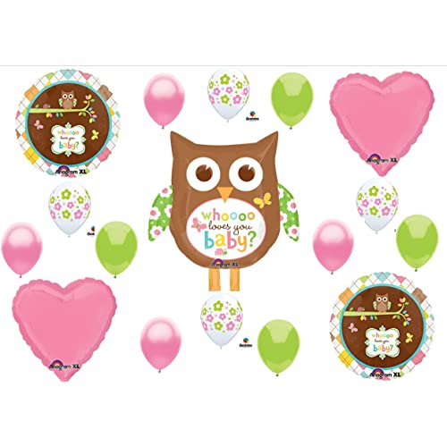 Baby Shower Decorations Owl Amazon Com