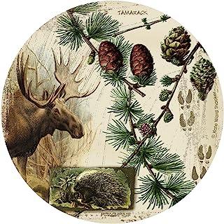 Thirstystone Drink Coaster Set, Bull Moose Collage