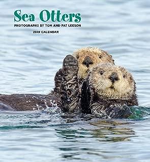 sea otter calendar 2019
