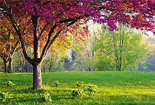 BuEnn 5x3ft Rosa Sakura Blumen Baum Hintergrund Landschaft Gras Feld Frühling Sommer Naturlandschaft Kirschblüte Grüne Wiese Fotografie Hintergrund Tuch Banner Fotostudio Requisiten