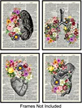Organs & Flowers On Photo of Dictionary Page - Unframed Wall Art Prints - Cool Steampunk Home Decor - Easy Affordadble Gift - Set of 4 - Ready to Frame (8x10) Photos