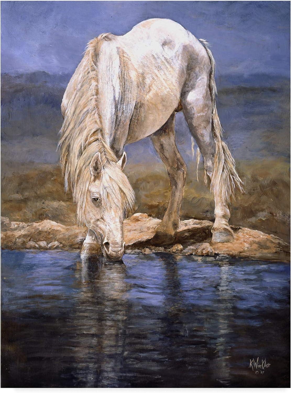 Trademark Fine Art Rhapsody in bluee Horse Art by Kathy Winkler, 14x19