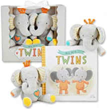 twin girl gift baskets