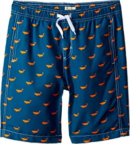 Hatley Kids Tiny Whales Swim Trunks (Toddler/Little Kids/Big Kids)