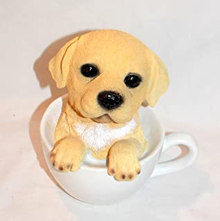 Best adorable yellow lab puppies Reviews