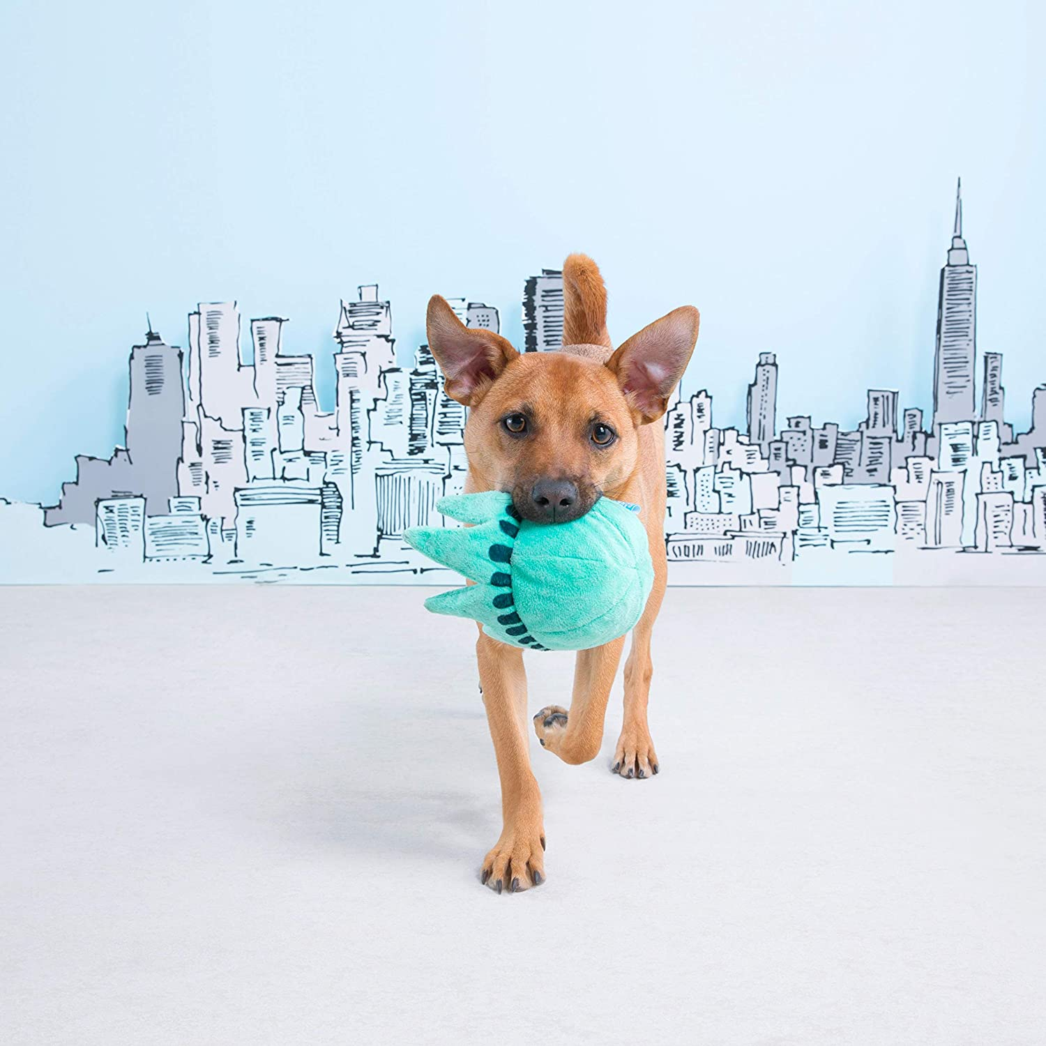 BarkBox Dog Squeak Toys Durable Tug and Fetch Toys Consuela The Cactus Medium//Large Stuffed Plush Toys and Balls for Small//Medium//Large Dogs 2-in-1 Interactive Toys for Chewers