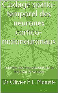 Codage spatio-temporel des neurones cortico-motoneuronaux: contrôle des mouvements de la main par le cerveau (French Edition)
