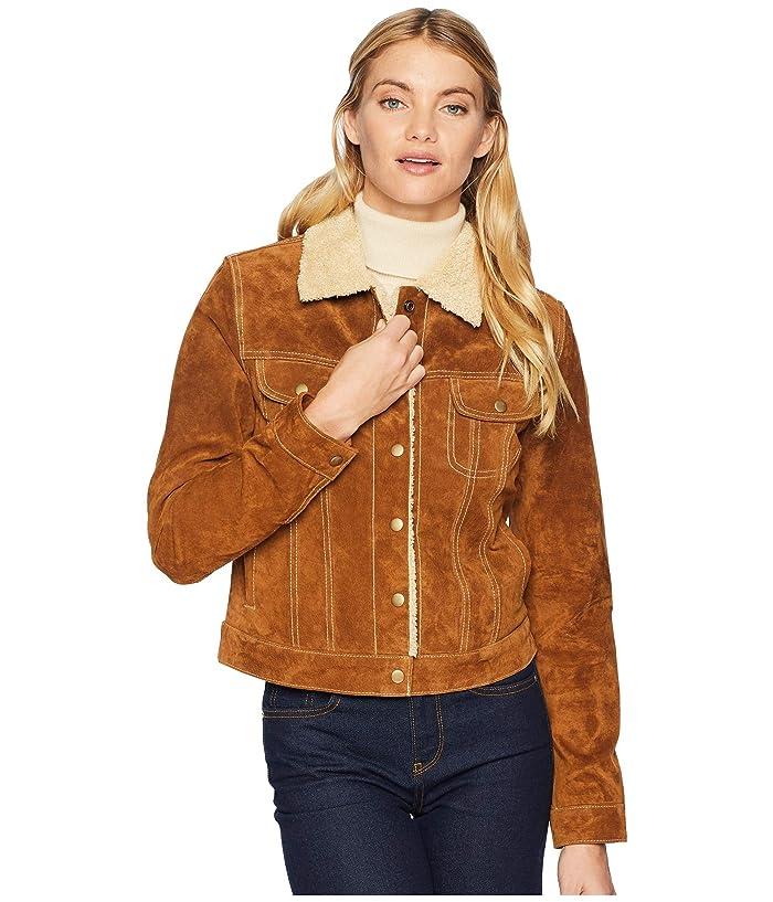 Scully  Raewyn Sherpa Suede Ladies Fun Little Jean Jacket (Cinnamon) Womens Coat