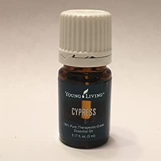 Cypress Essential Oil 5ml by Young Living Essential Oils