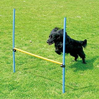 PAWISE Pet Dogs Outdoor Games Agility Exercise Training Equipment Agility Starter Kit Jump Hoop Hurdle Bar