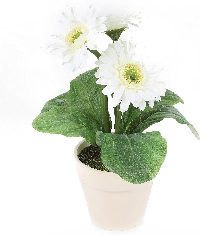 Indianapolis Mall Closer2Nature Artificial Super intense SALE 1ft White Gerbera Decorative Plant a in
