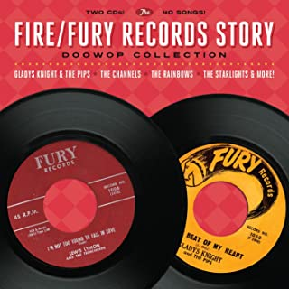 fire fury records story