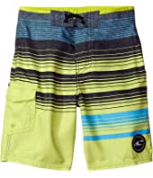 O'Neill Kids - Lennox Boardshorts (Big Kids)