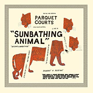 parquet courts black and white