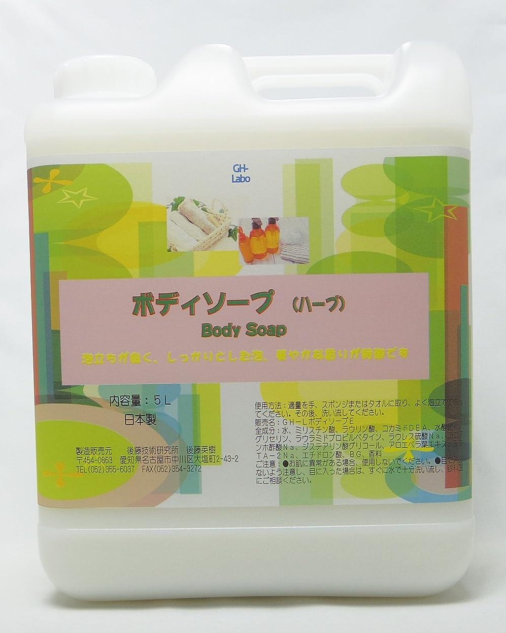 修正月面勧めるGH-Labo 業務用ボディソープ ハーブ(セージ)の香り 5L