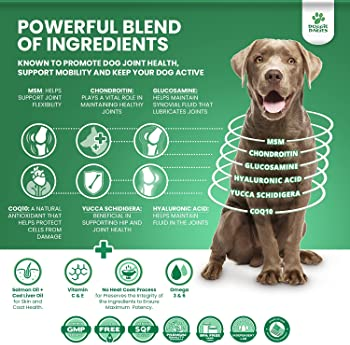 Doggie Dailies Glucosamine for Dogs, 225 Soft Chews, Advanced Hip and Joint Supplement for Dogs with Glucosamine, Cho...