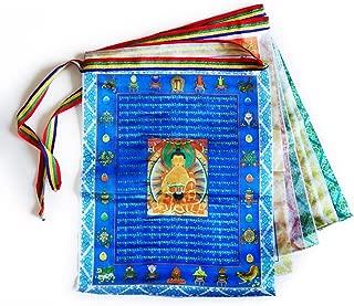 Tibetan Prayer Flags Outdoor Buddhist Meditation Flag 10pcs Satin Wind Horse Lungta Prayer Flags,11x14 inches