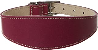 """BBD PET PRODUCTS Greyhound Deluxe Collar,14""""-16"""", Boysenberry"""